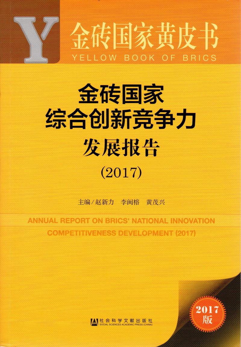 金砖国家综合创新竞争力发展报告(2017)